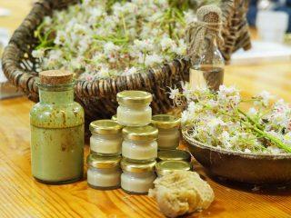 Miniaturka: Warsztaty zielarskie w Radawcu Dużym 2019
